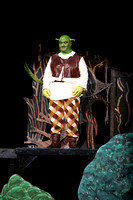 2014 SHREK performance - Flagstaff Youth Theater AFYAR